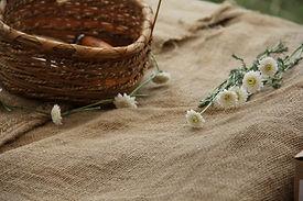 chamomile_basket_nature_garden-1264142.jpg!d.jpg