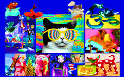 Cool Cat Vision - Sher Love