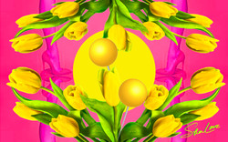 Yellow Tulips Sher Love Collage