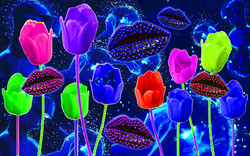Tulips Kiss Sher Love Collage