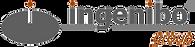 logo-ingenibo-group.png