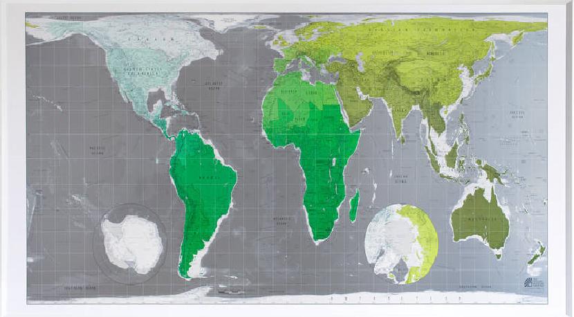 Green Metallic Map