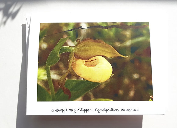 Blank Card with Nature Photography- Yellow Lady Slipper