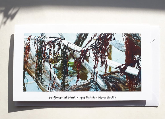 Blank Card with Nature Photography-Driftwood