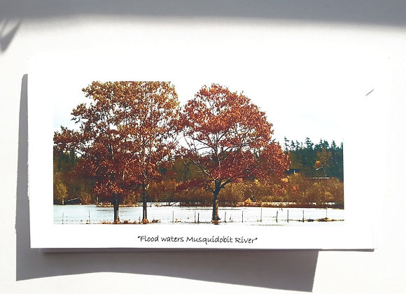 Blank Card with Nature Photography- Musquodoboit river