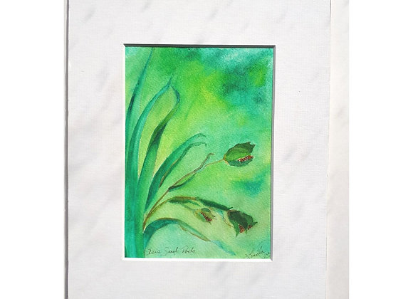 Watercolor Painting with tall leaves with Iris seeds
