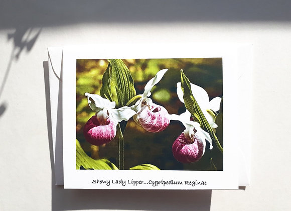 Blank Card with Nature Photography-Pink Lady Slipper