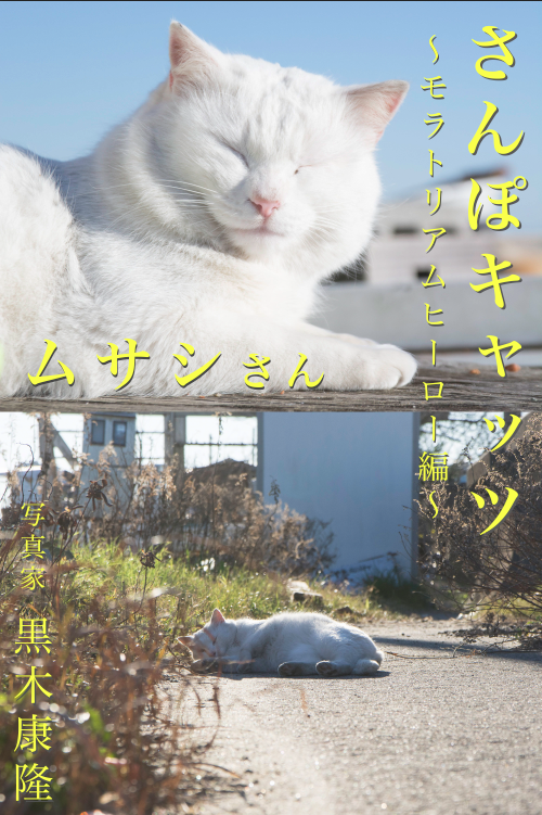 さんぽキャッツ ムサシさん