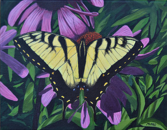Tiger Swallowtail (sold)