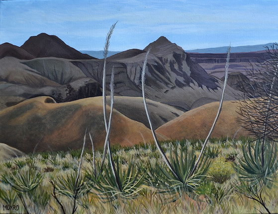 Big Bend Vista (sold)