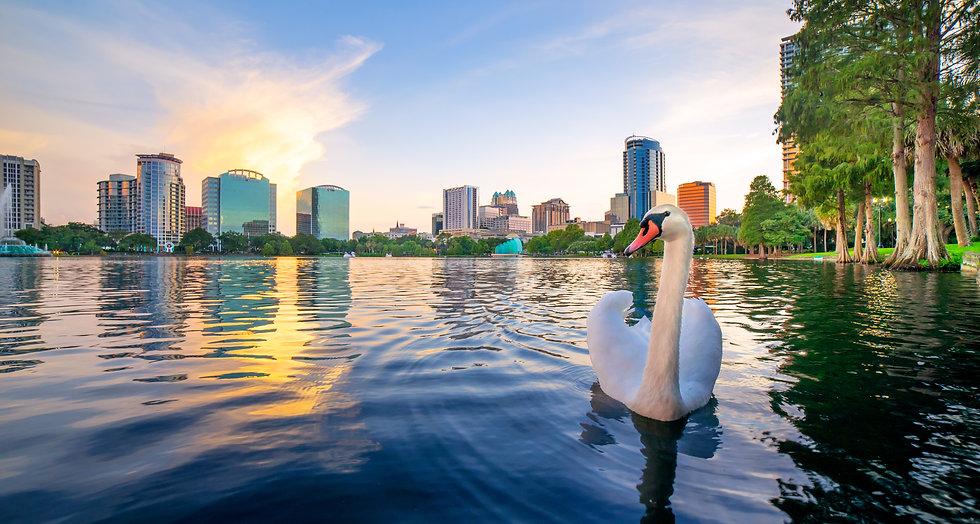 copyright-hfn-orlando-x129x-Swan-at-Lake-Eola-Park-Orlando-Florida-Cityscape.jpg