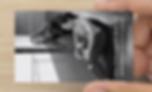 Screen Shot 2020-01-08 at 2.14.32 PM.png
