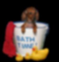 BathTime_clipped_rev_1.png