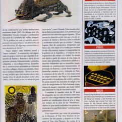 Newsletter Arte