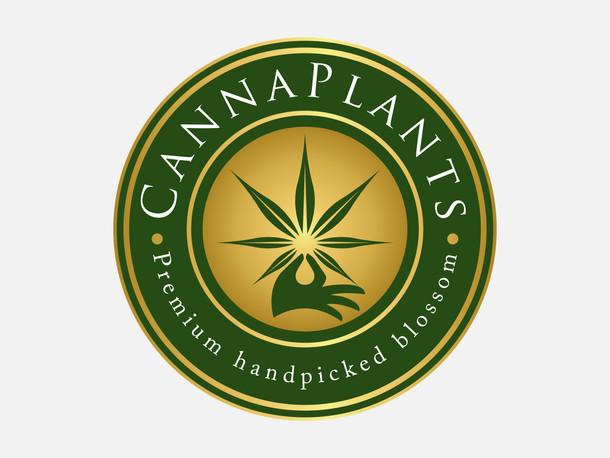 CannaPlant logo final 2-01.jpg
