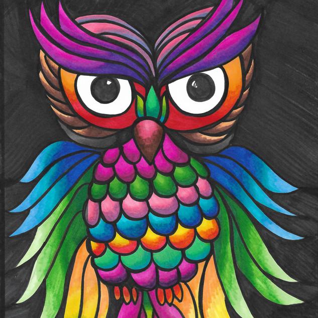 Owl color.jpg
