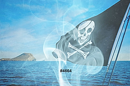 Pirate%20flag%20on%20the%20sea_edited.jp
