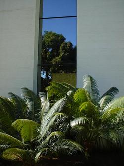 PREDIO VICENTE-03-12-2002 047.jpg