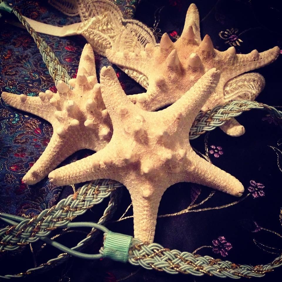 Starfish Headbands
