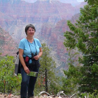 Grand Canyon (North Rim) artist residency