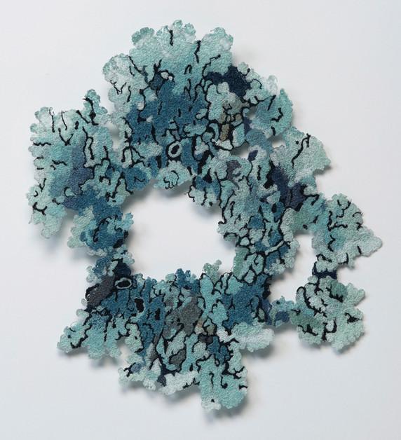 Lichens_Blue green lichen_detail_1000.jp