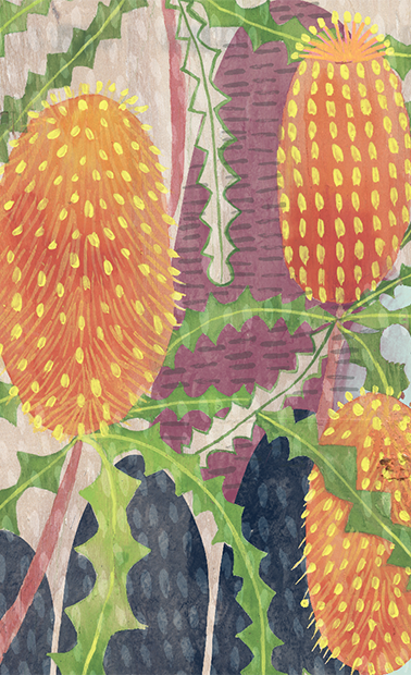 Exhibition Panel Ashby's Banksia 1