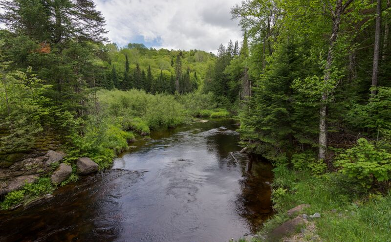Ruisseau | Chalet Lac-Sauvage