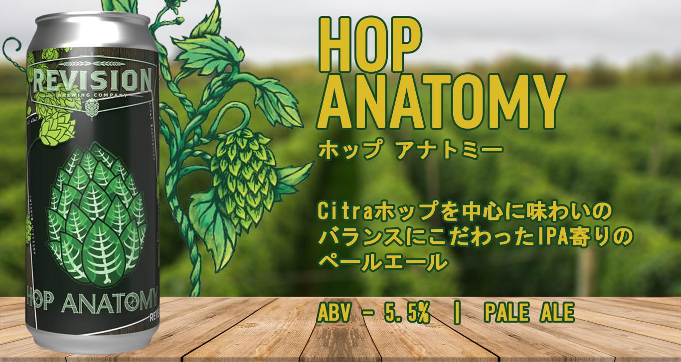 Hop Anatomy.jpg