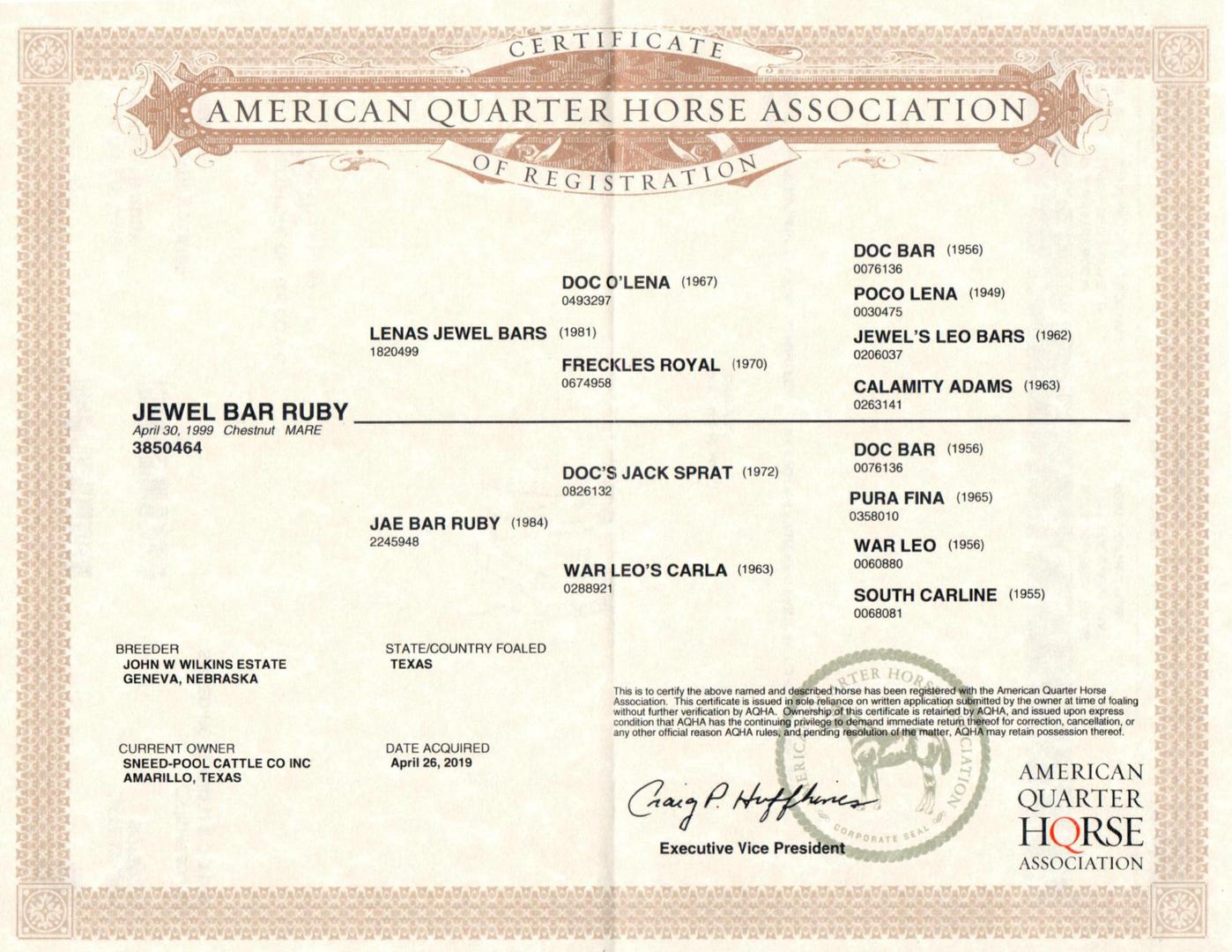 Jewel Bar Ruby AQHA certificate