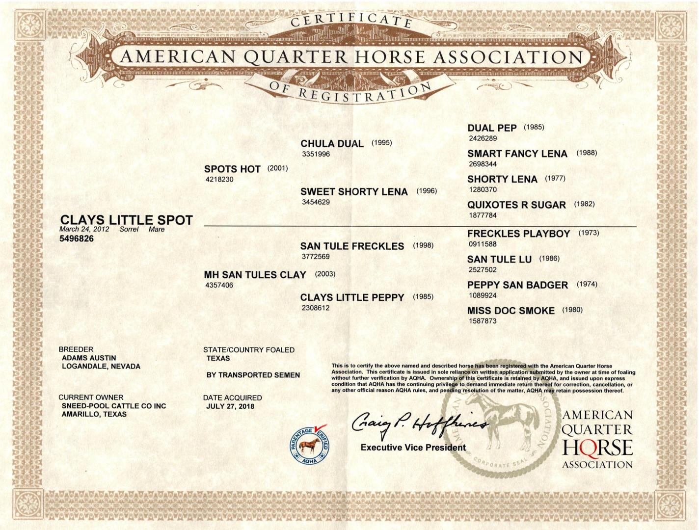 Clays Little Spot AQHA Certificate