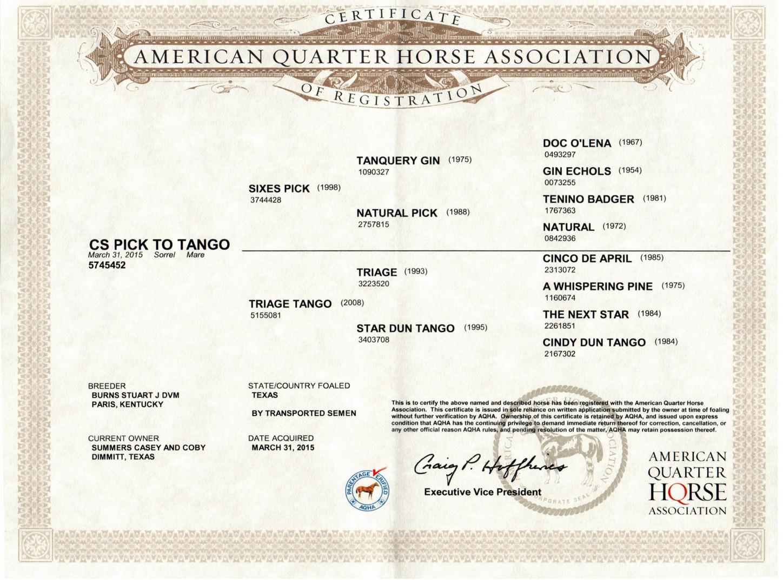 C S Pick To Tango AQHA Certificate