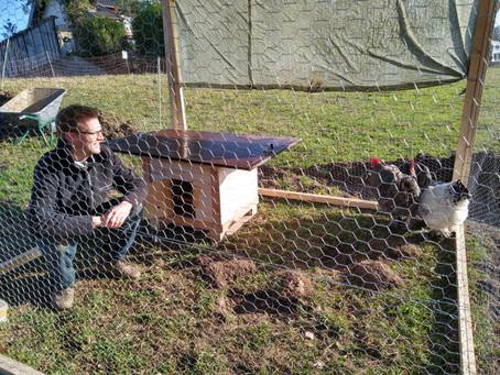 Mobiler Hühnerauslauf