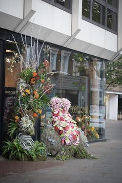 Chelsea in Bloom - Cavelli
