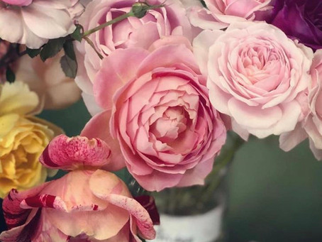 Shining A Light On: The Real Flower Company