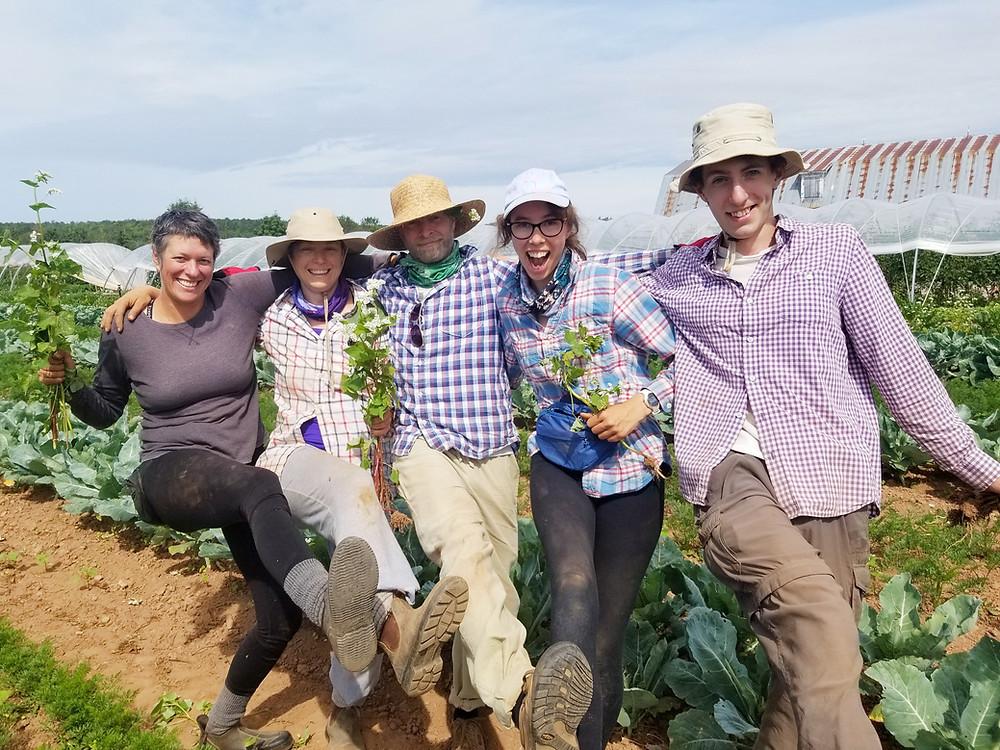 Soleil's Farm Local Organic Vegetable Farm Prince Edward Island Playful Farming Friends