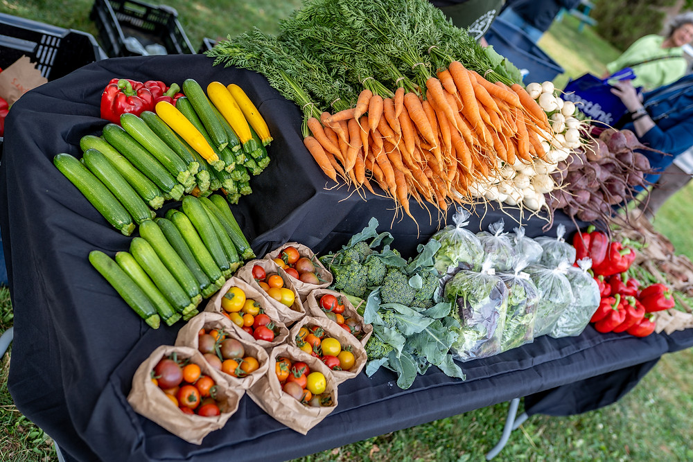 Soleil's organic vegetable farm Prince Edward Island