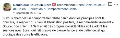 Douceur de chien témoignage-Dominique.p