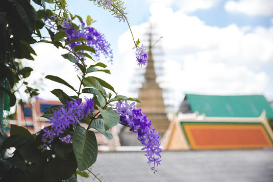 Wat Ratchaborphit temple