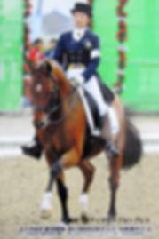 アイリッシュアラン乗馬学校について.jpg