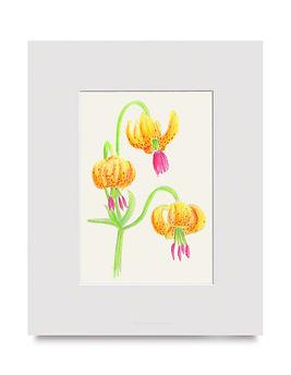 Flowers Art By Christina