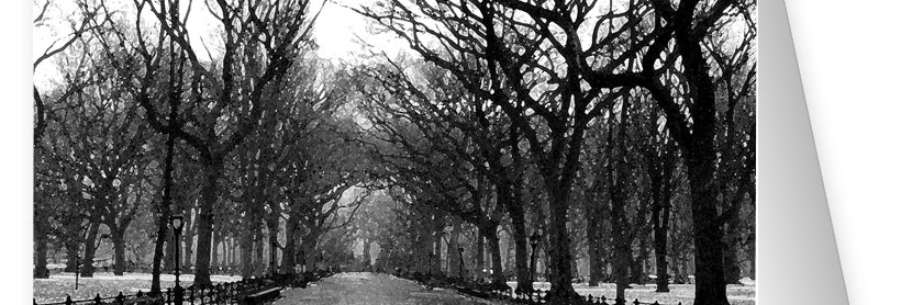 New York Central Park Series