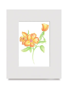 Orange Flowers art