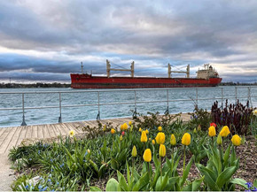 Freighter in St. Clair, Michigan