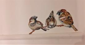 house sparrow_The Bath Hotel_Elizabeth V