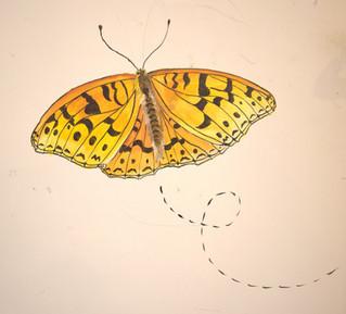 high brown butterfly on door mural Natio