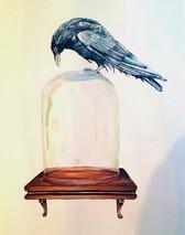 corvid on bell jar Curiosity room Bath H