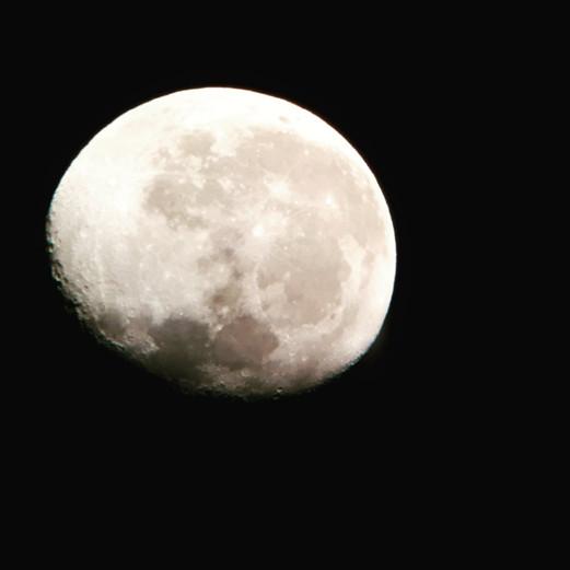 Moon Martinhoe Sept 2018.jpg