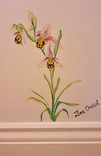 bee orchid_The Bath Hotel_Elizabeth Vict