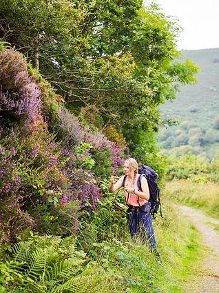 exmoor_exp_wild_foraging_summer_2019_cf0
