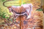 long horn cattle butterfly mural Heddon